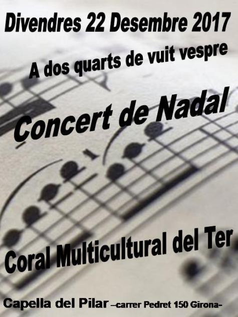 Concert 22 desembre C Multicultural Ter