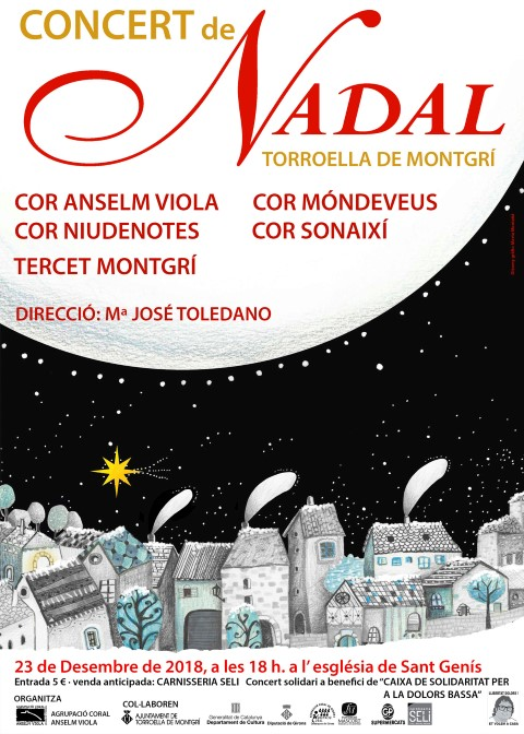 Concert Nadal Cor Anselm Viola (Small)