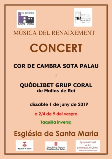 Cartell 1 de juny 2019 C de Cambra Sota Palau (Small)