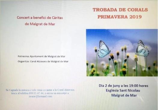 Cartell 2 de juny C de Cambra Sota Palau1 (Small)