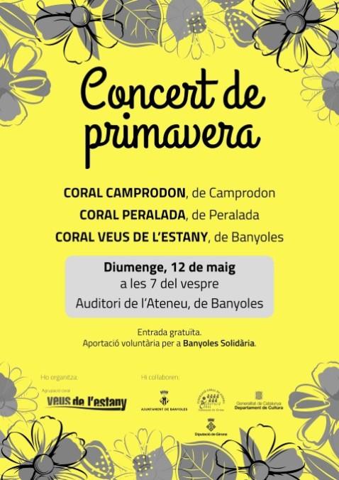 Concert de Primavera C Veus de l'Estany 2019 (Small)