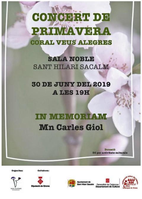 CARTELL CONCERT DE PRIMAVERA C Veus Alegres 2019 (Small)