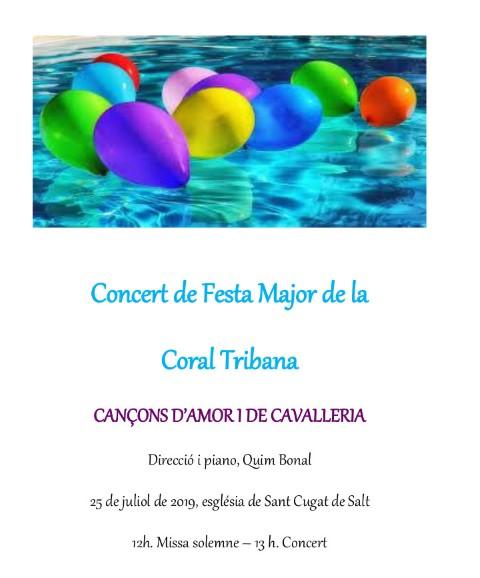 cartell Festa Major 2019 C Tribana (Small)