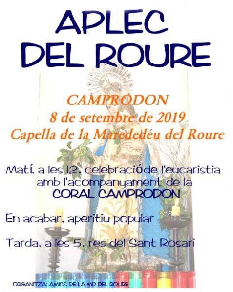 Aplec del Roure2019 C Camprodon (Small)