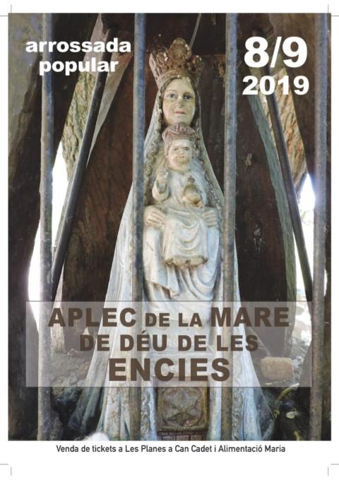 Festa de les Encies 2019 C Retorn Planenc (Small)
