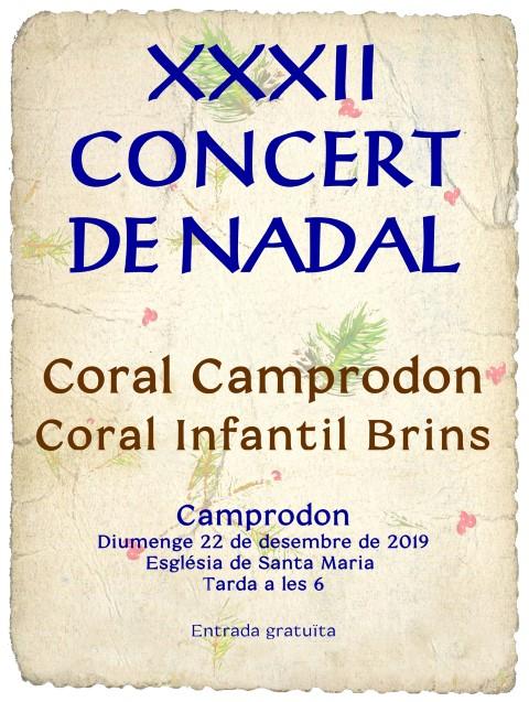 Camprodon Concert de Nadal