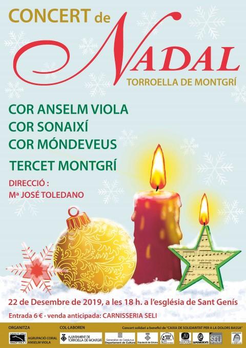 Concert de Nadal 22 desembre 2019 C Anselm Viola